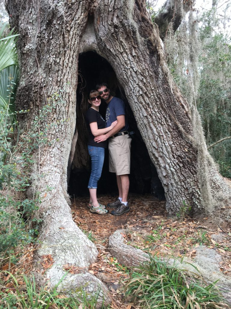 Jekyll Island Hollow Tree The Touring Camper